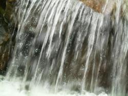 Wasser_Bewegung_Leben